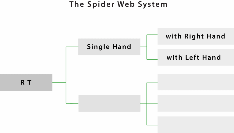 LEAD.The Spider Web System